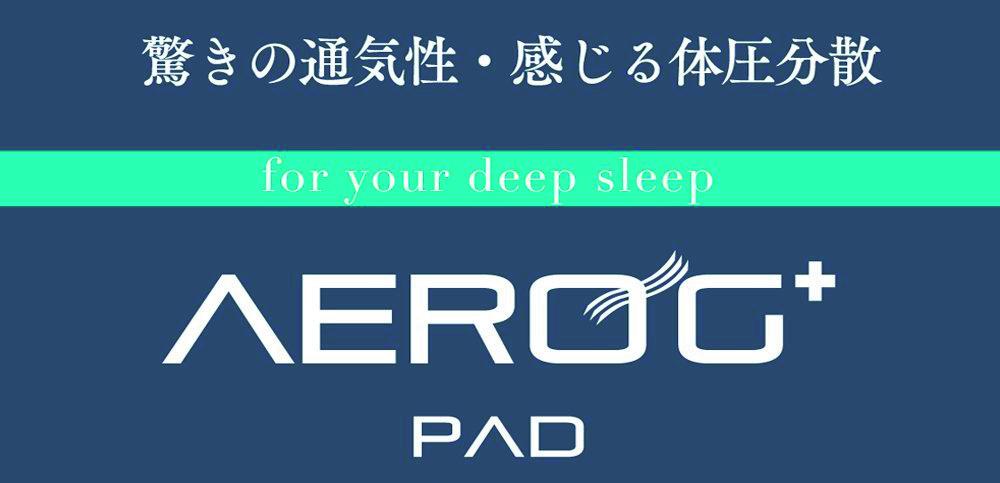 AERO G ロゴ